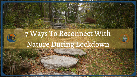 7 Ways To Reconnect With Nature During Lockdown